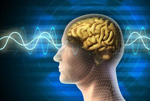 Những phương pháp học tiếng Anh bằng não bộ