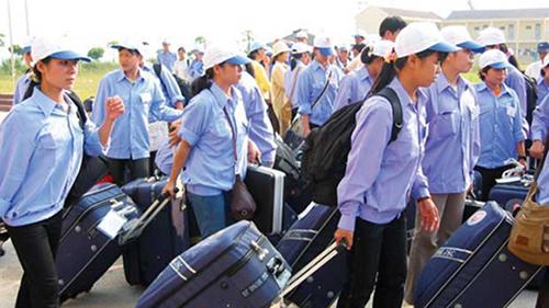 Xuất khẩu lao động tại Thái Bình